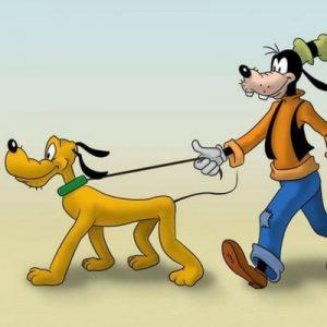 Ένας σκύλος που βγάζει βόλτα ένα σκύλο