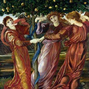 Τα μήλα των εσπερίδων